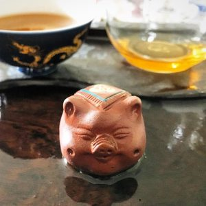 Piggy the tea pet